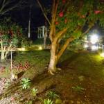 LN_m_Luna_balcony_view_night_1024X763
